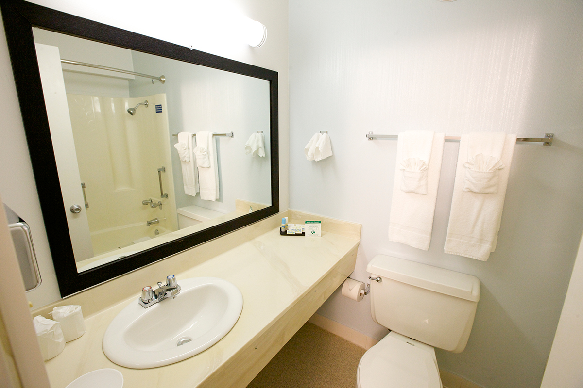 Hotel bathroom vanity and commode